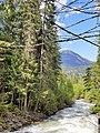 Creek near Sutherland Falls Blanket Creek Provincial Park, BC.jpg
