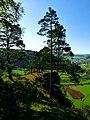 Cross And Pines - panoramio.jpg