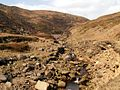 Crowden Great Brook - geograph.org.uk - 393536.jpg