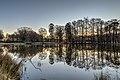 Dülmen, Wildpark -- 2019 -- 3153-9.jpg