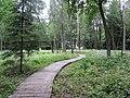 Dūkštų sen., Lithuania - panoramio (43).jpg