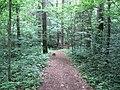 Dūkštų sen., Lithuania - panoramio (96).jpg