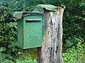 D-FRA Greensteelletterboxtrunk2.jpg