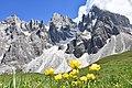 DSC 1649 Dolomiti.jpg