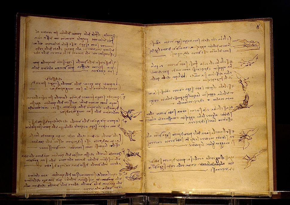 Da Vinci codex du vol des oiseaux Luc Viatour