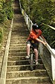 Daring kid descends long staircase on a unicycle (2874811872).jpg