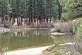 Davis Creek Park - panoramio (8).jpg