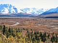 Denali National Park-1.jpg