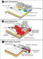 Denali National Park tectonic history.png