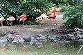 Denver Zoo 21.jpg
