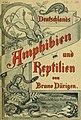 Deutschlands Amphibien und Reptilien (1890) (20267491013).jpg