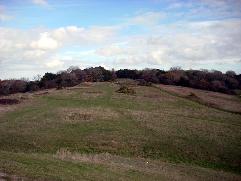 File:Devil's Humps C and D, with pond barrow.jpg