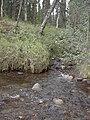 Dewey Creek Water Quality Testing, Yukon-Charley Rivers, 2003 (e54cf033-8d21-473d-9c70-25d010d8140f).jpg