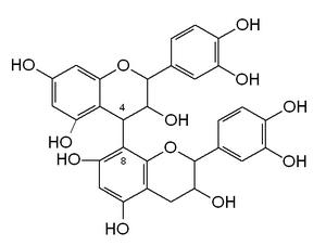 B type proanthocyanidin - Dimeric 4→8 B type proanthocyanidin chemical structure