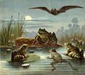 Discontentedfrogs-03.png