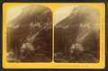 Dismal Pool & R.R. White Mtn. Notch, from Robert N. Dennis collection of stereoscopic views.png