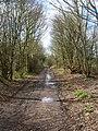 Dismantled Railway - geograph.org.uk - 150991.jpg