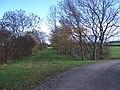 Dismantled Railway Track near Newton Blossomville - geograph.org.uk - 288595.jpg
