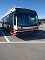 Disney Bus Number 4843 (31292300270).jpg