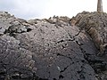 Dolerite Columnar Basalt at Pen Anglas - geograph.org.uk - 1510905.jpg