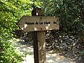 """Dolmen du Lac d'Aurie dit du """"Pech Lapeyre"""" près de Limogne en Quercy (01).jpg"""