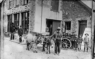 Pwllheli - Donkeys outside a warehouse in Pwllheli, circa 1885.
