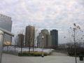 Downtown Chicago Illinois Nov05 img 2550.jpg