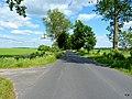 Droga w kierunku Piaseczna. - panoramio.jpg