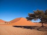 Dune 45.jpg