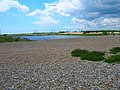 Dungeness Nature Reserve - geograph.org.uk - 449047.jpg