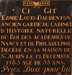 Edme-Louis Daubenton - Tombstone in the church of Saint-Pierre in Avon