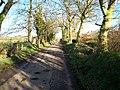Ednego Avenue, Banbridge - geograph.org.uk - 703364.jpg
