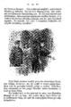 Elisabeth Werner, Vineta (1877), page - 0041.png