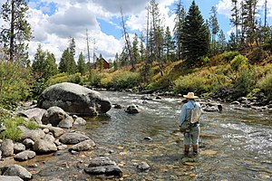 Elk River (Colorado) - A view of a fisherman in the river along Seedhouse Road, near Clark.