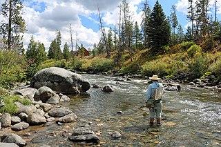 Elk River (Colorado) stream in Colorado