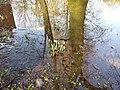 Elsrijk, 1181 Amstelveen, Netherlands - panoramio (8).jpg
