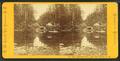 Emerald Pool, near Glen House, N.H, by Pease, N. W. (Nathan W.), 1836-1918 3.png