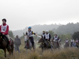 Endurance riding - Competitors on an endurance ride