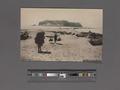 Enoshima Island (NYPL Hades-2360077-4043876).tiff