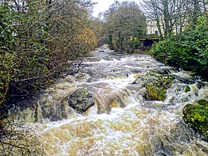 Dartmoor - River Erme at Ivybridge.