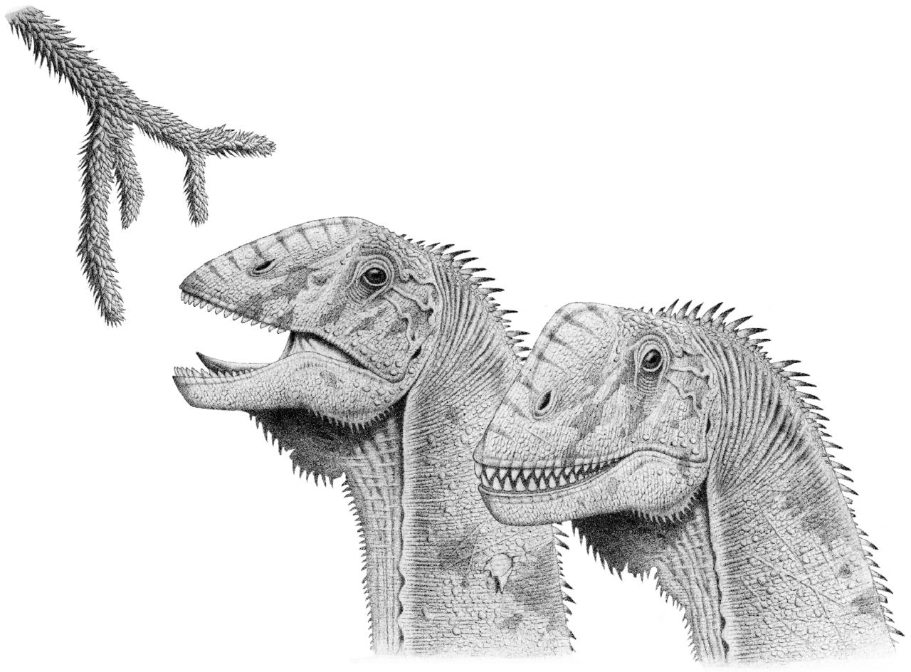 Christian Ryan: Sauropods - Giants Among Saurians