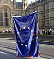 European Union Flag Westminster.jpg