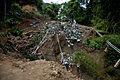 FEMA - 39072 - Road damage in Puerto Rico.jpg