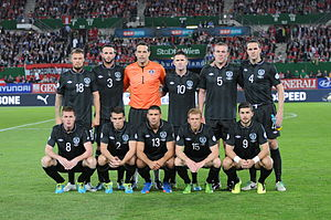 Republic of Ireland national football team - Irish team in September 2013
