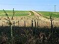 Farmland in the Leckhampstead area - geograph.org.uk - 71339.jpg