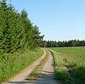 Feldweg - panoramio (8).jpg