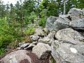 Felsen, Hadriwa-Höhenweg.jpg
