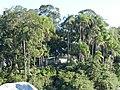 Ferry Boat (Vila da Glória-São Francisco do Sul) - panoramio (4).jpg