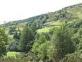 Fferm Blaen y Cwm Farm - geograph.org.uk - 536662.jpg