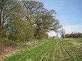 Field southwest of Nunley Farm - geograph.org.uk - 1803678.jpg